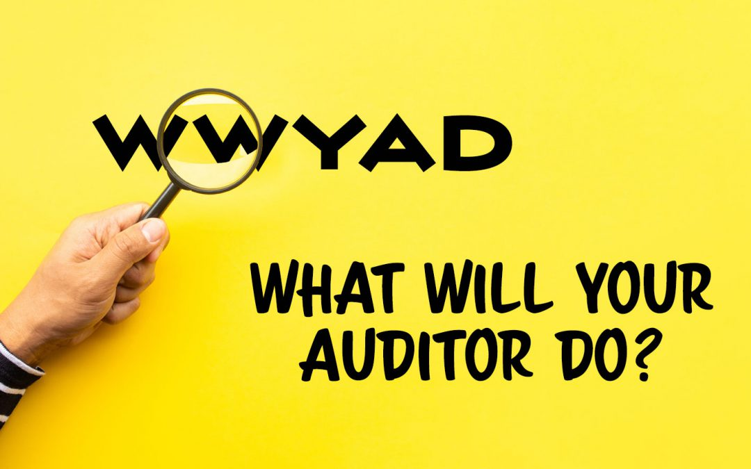 What will your auditor do?